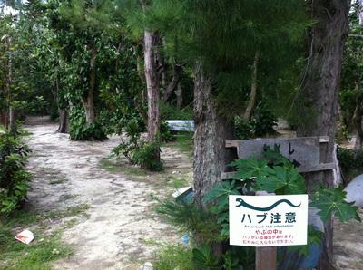 阿波連キャンプ場
