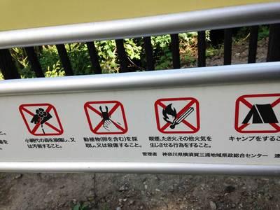 小網代の森 注意事項