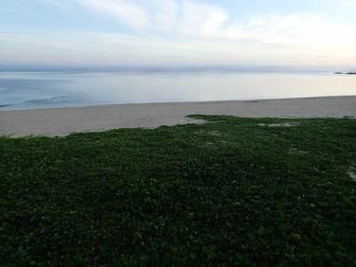 恩納村 タイガービーチ