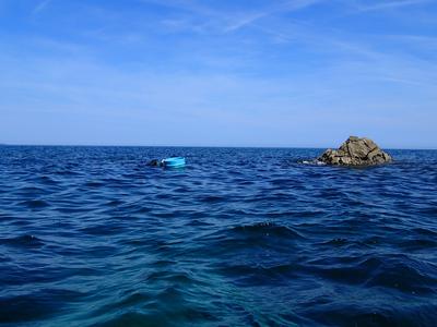 笹川流れ 岩牡蠣漁