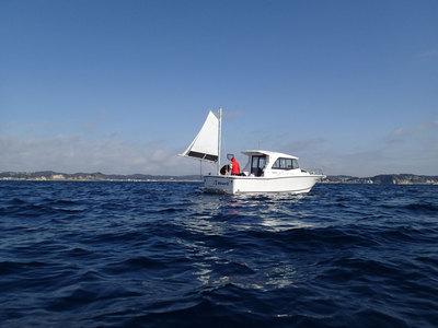相模湾 ボート