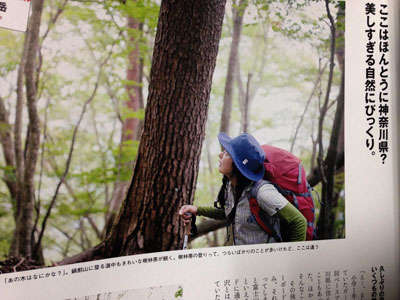 IMG_4445_20151101.jpg
